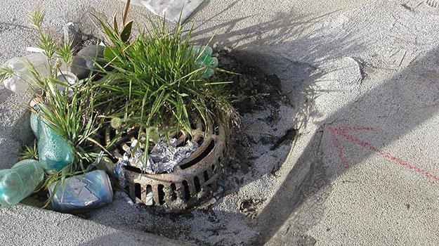 debris-in-drain